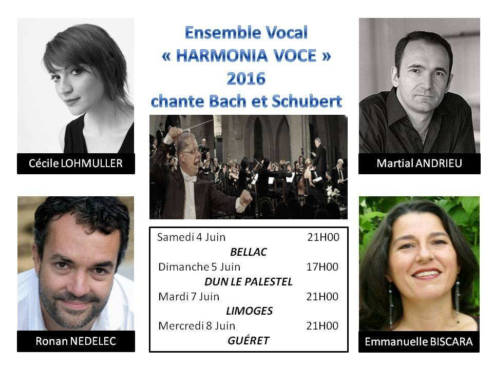 Ensemble Vocal HARMONIA VOCE